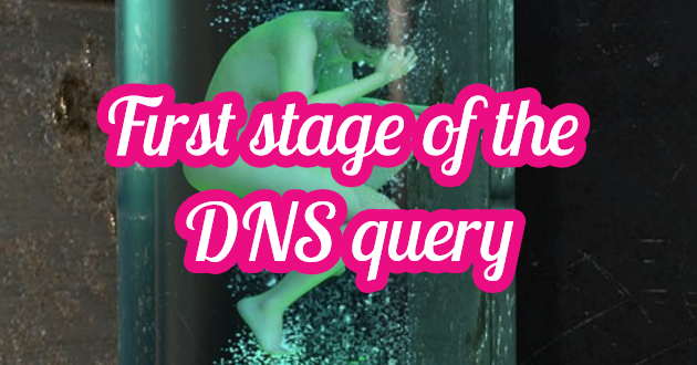 First Stage of the DNS Query