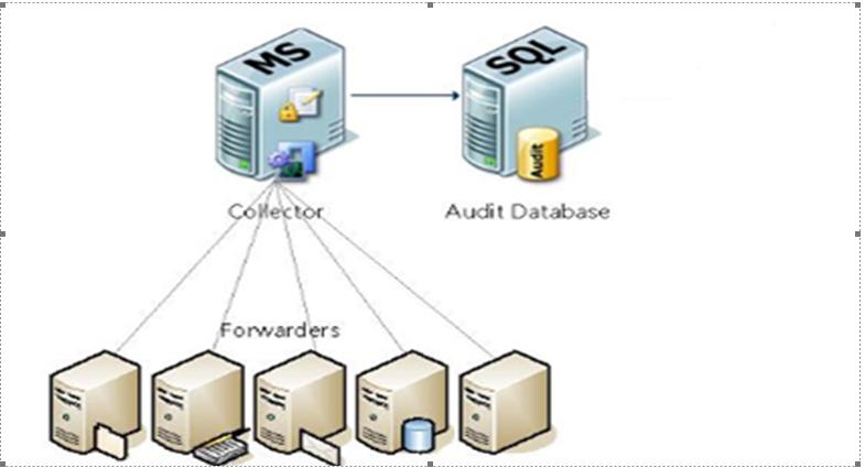 ACS Database