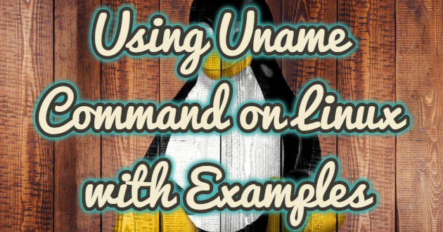 Using Uname Command on Linux with Examples
