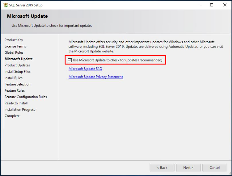 Use Microsoft Update to check for updates (recommended)
