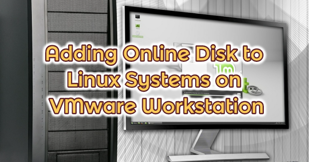 Adding Online Disk to Linux Systems on VMware Workstation