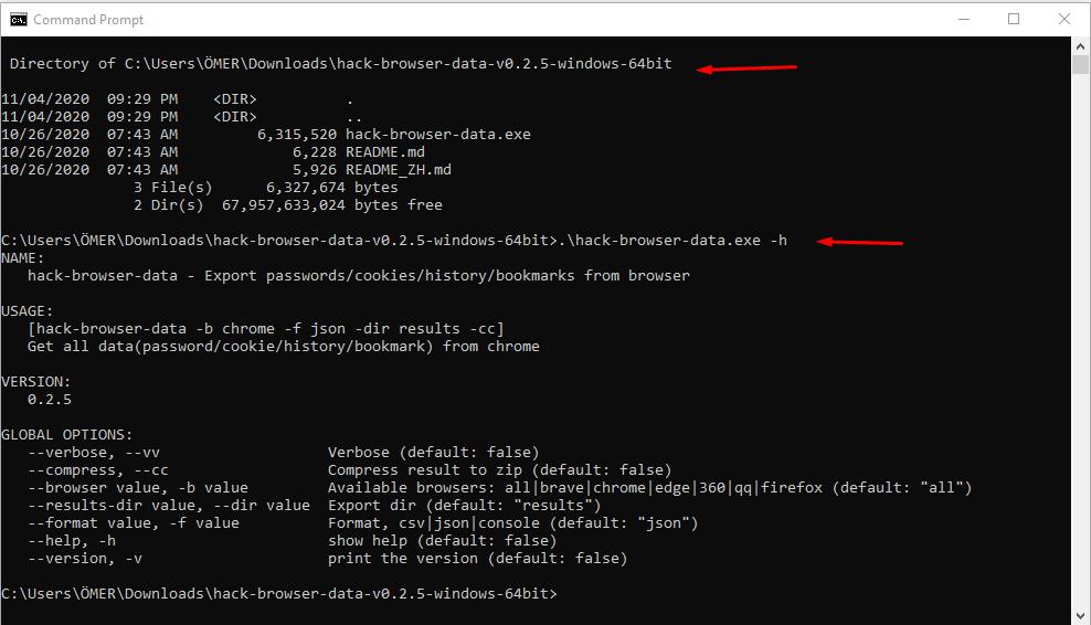 .\hack-browser-data.exe -h