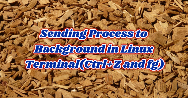 Sending Process to Background in Linux Terminal(Ctrl+Z and fg)