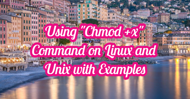 "Using ""Chmod +x"" Command on Linux and Unix with Examples"