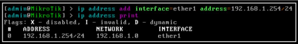 Dynamic IP Addressing