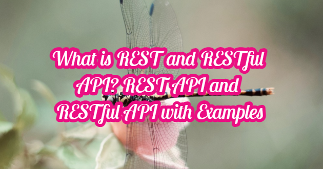 What is REST and RESTful API? REST API and RESTful API with Examples