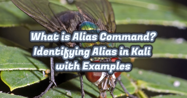 What is Alias Command? Identifying Alias ​​in Kali with Examples