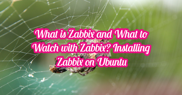 What is Zabbix and What to Watch with Zabbix? – Installing Zabbix on Ubuntu