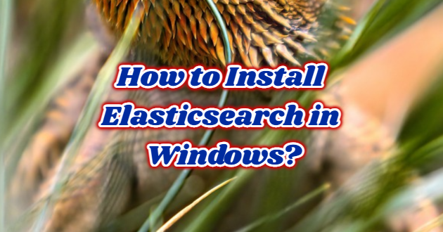 How to Install Elasticsearch in Windows?