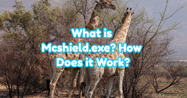 What is Mcshield.exe? How Does it Work?