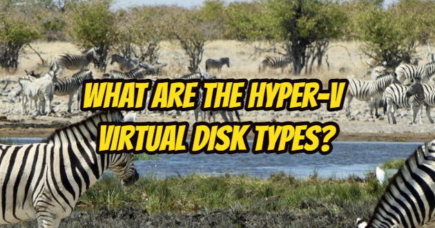 What are the Hyper-V Virtual Disk Types?