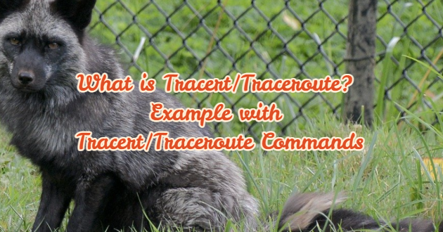 What is Tracert/Traceroute? Example with Tracert/Traceroute Commands1