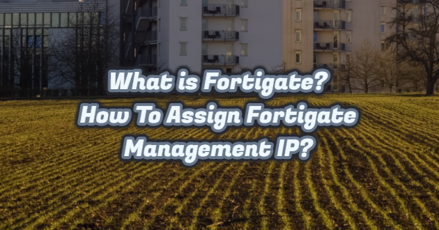 What is Fortigate? How To Assign Fortigate Management IP?
